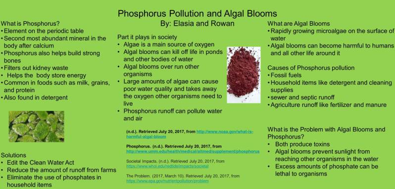 Phosporus Pollution and Algal Blooms Poster