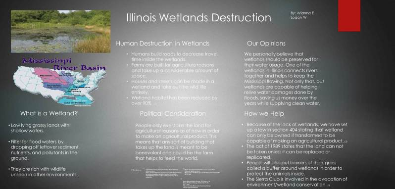 Wetland Destruction